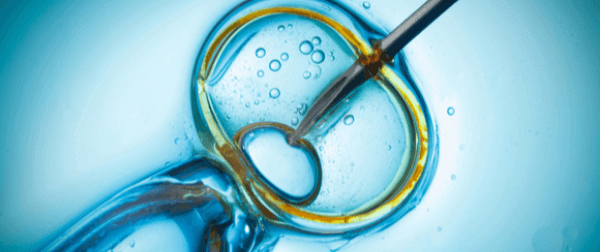 Assisted reproduction process